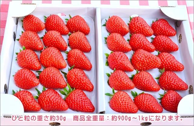 紅ほっぺデラックスパック 30粒入 大箱 3,600円